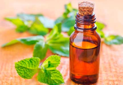 el aceite de menta es astringente y ayuda eliminar la obstruccion de los poros